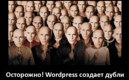 Осторожно! WordPress создает много дублей!