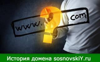 История о том, как я получил домен sosnovskiY.ru