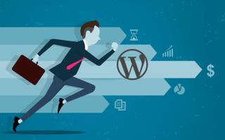 Как бесплатно ускорить, защитить и оптимизировать сайт на WordPress с помощью плагина WP01?