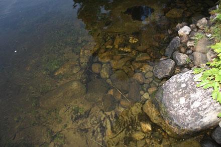 вода в американском озере