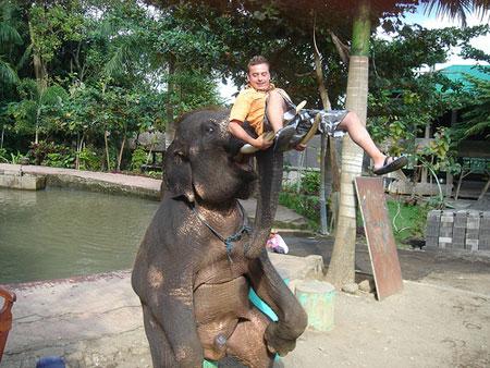 Косьян и слон
