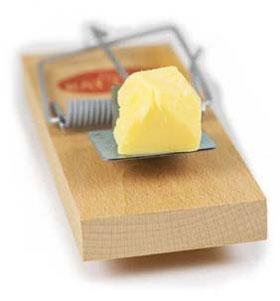бесплатный сыр в мышеловке