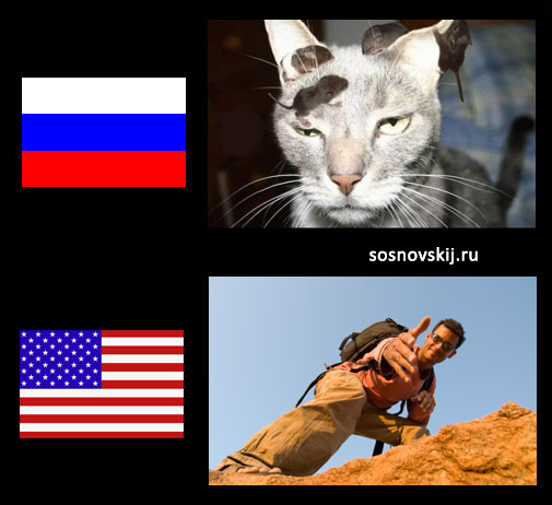 отзывчивость в США и России