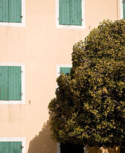 зеленые окна в Рафаиловичи