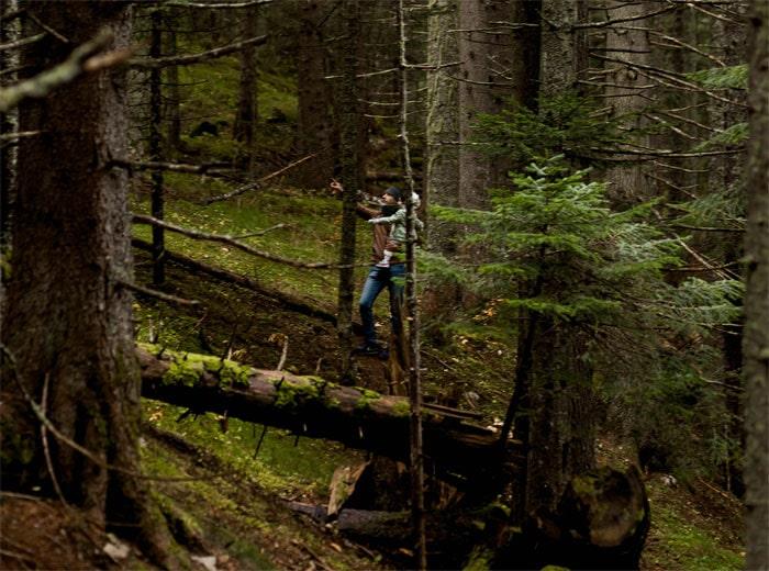лес Дурмитор (Черное озеро)