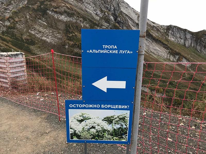 Тропа Альпийские луга