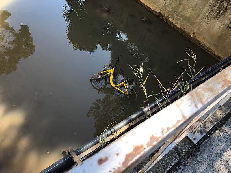 прокатный велосипед в речном канале