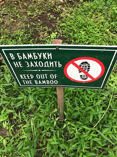 в бамбуки не заходить