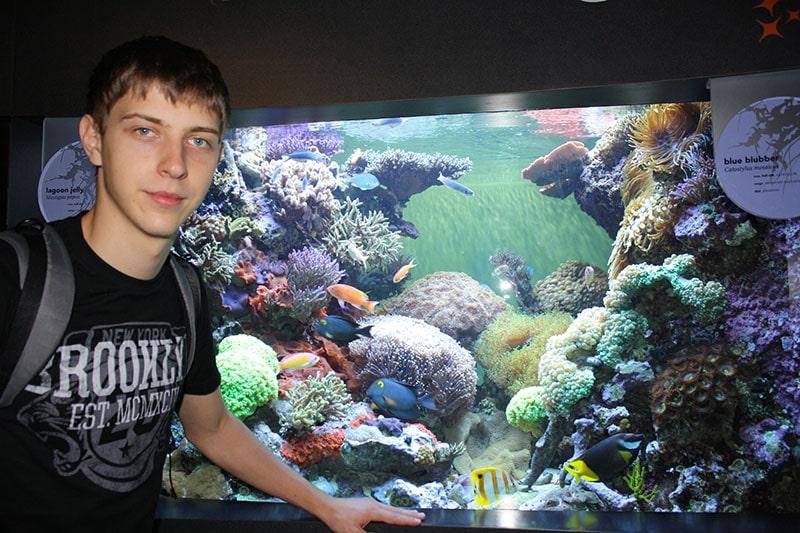В Бостонском аквариуме