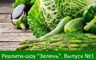 Реалити-шоу «Зелень». Выпуск №1