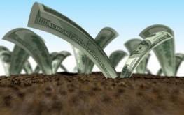 Куда выгодно вкладывать деньги?