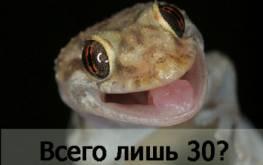 ТИЦ 30 за 750 рублей или эксперимент по поднятию ТИЦ статьями (Часть 3 — последняя).