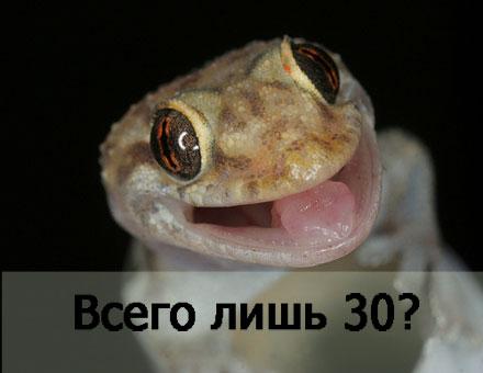 ТИЦ 30 за 750 рублей или эксперимент по поднятию ТИЦ статьями (Часть 3 - последняя).
