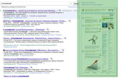 функция предпросмотра страниц в поисковой системе Google