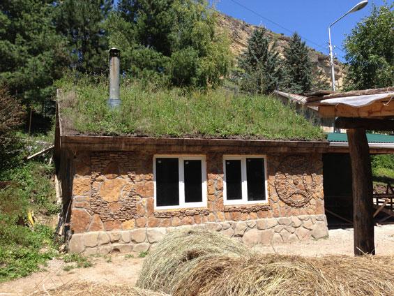 дом с крышей из травы