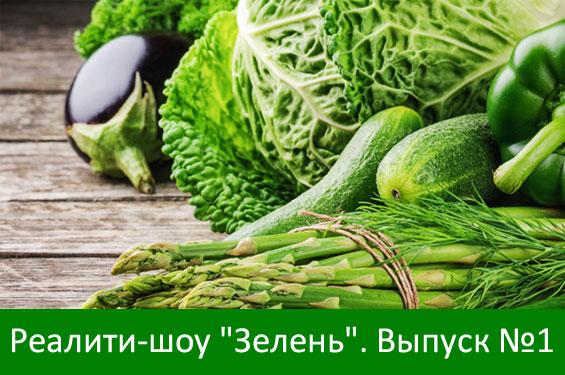 "Реалити-шоу ""Зелень"". Выпуск №1"