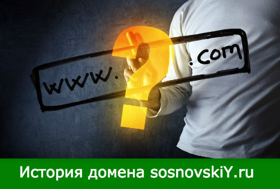 история домена sosnovskiY