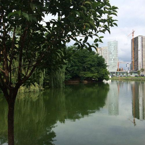 озеро около кафе